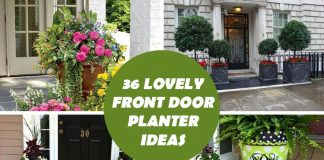 36 Lovely Front Door Planter Ideas