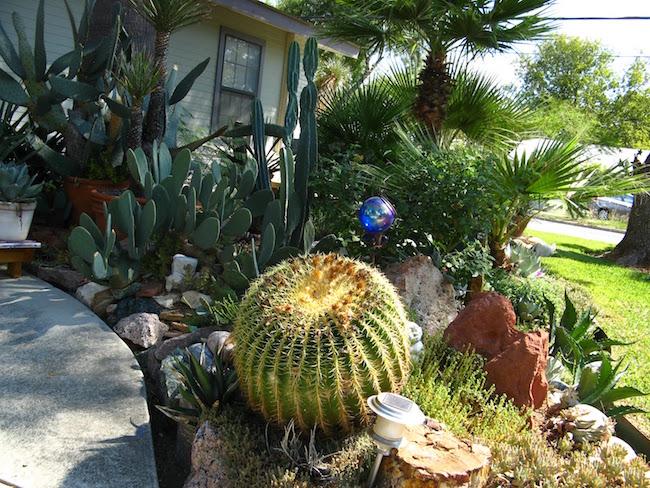 36 Cactus Garden Design Ideas Landscaping With Cactus
