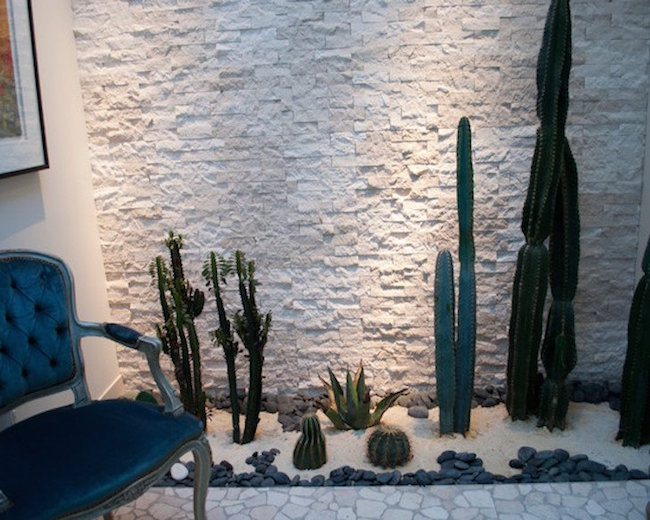 Indoor Cactus Garden Ideas Part - 19: Beautiful Indoor Landscaping Of Cactuses.