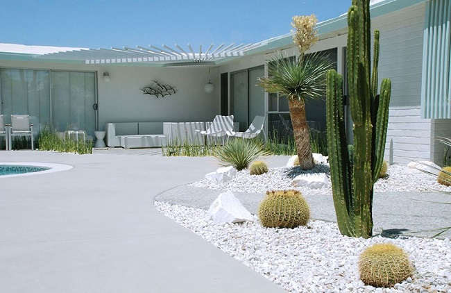 36 Cactus Garden Design Ideas Landscaping with Cactus and Rocks