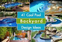 Pool Backyard Design Ideas