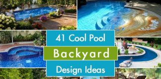 Pool Backyard Design Ideas
